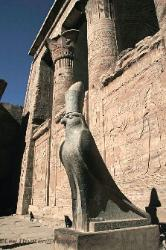 Statue of Horus at Edfu, Egypt