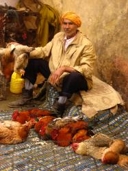 Chickens for sale, outdoor souk in Marrakech Morocco