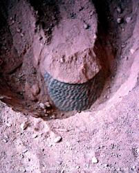 Pot in situ, Ute Mountain Tribal Park, Colorado
