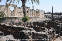 the Synagogue at Capernaum, Israel image 2