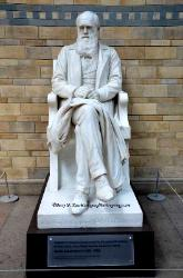 Statue of Darwin, Museum of Natural History,London,England