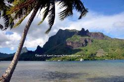 Cook's Bay, Moorea