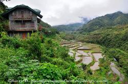 Philippines, northern Luzon, Ifugao, rice terraces, image 1