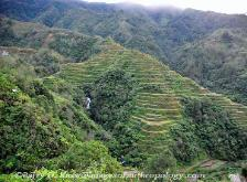 Philippines, northern Luzon, Ifugao, rice terraces, image 4