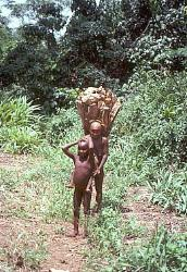 Pygmy woman carrying a heavy load, Central African Republic