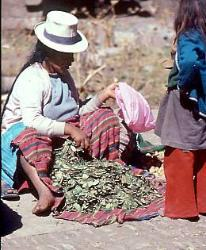 Woman selling coca leaves, town of Pisac, Andes Mts, Peru