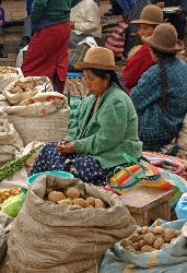 potatos for sale, outdoor market at Pisac, Andes Mts, Peru